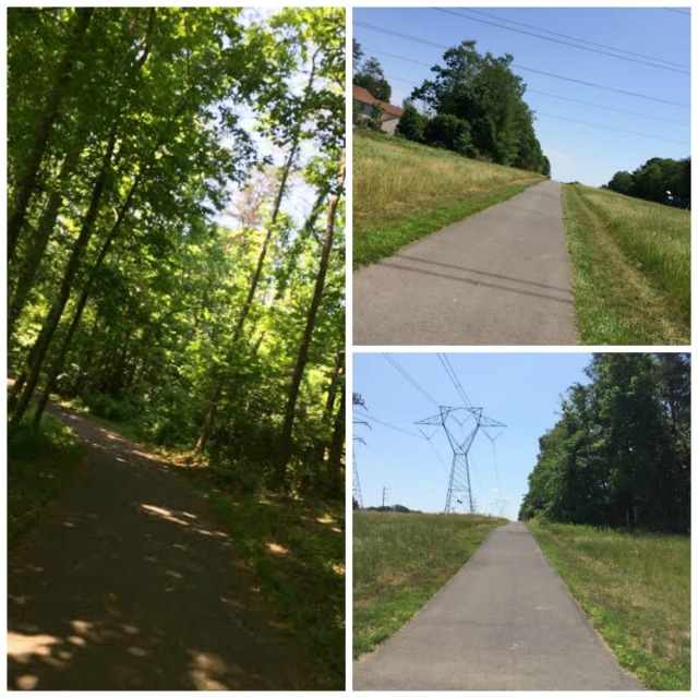 Scenes from our run, both in the shade and in the direct sun