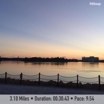 I was treated to an absolutely beautiful sunrise over the Seven Seas Lagoon during my one and only run at Disney World last week