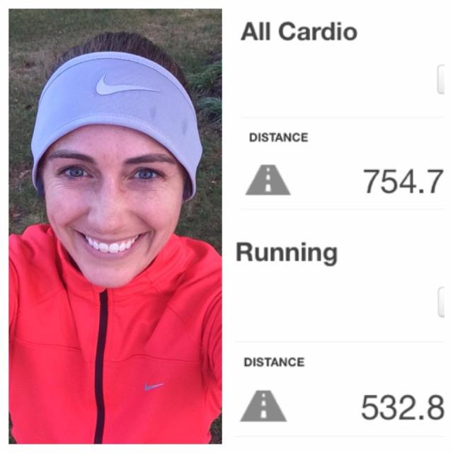 I completed my last run of 2016 on Friday, which brought my mileage total for the year to 754 miles, 532 of which I ran
