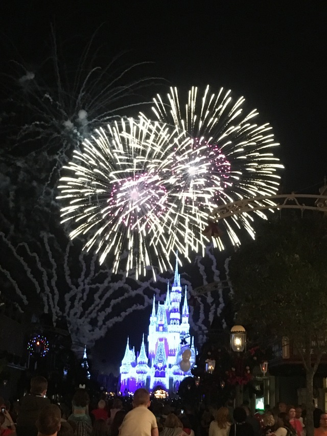 One of my absolute favorite sights at Disney is seeing the Wishes fireworks over Cinderellas Castle